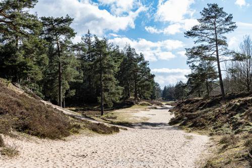 Ochsenweg 6