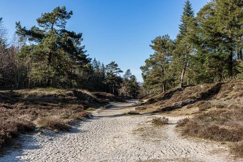 Ochsenweg 2